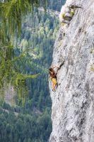 11b-Dolomitenhuette